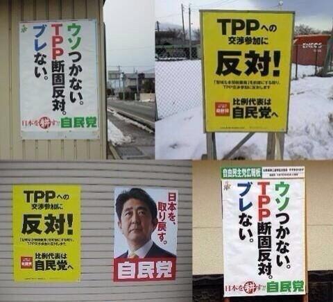 選挙の思い出_e0204105_1628401.jpg