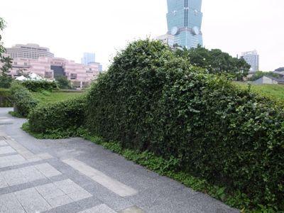 台北101タワーと麓の集落_d0147406_19242983.jpg