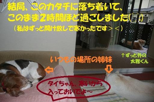 f0121712_15102188.jpg