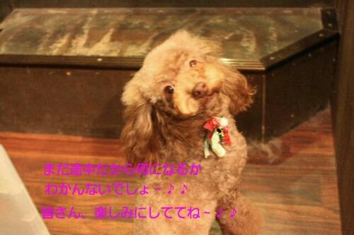 安室ちゃん_b0130018_0292814.jpg