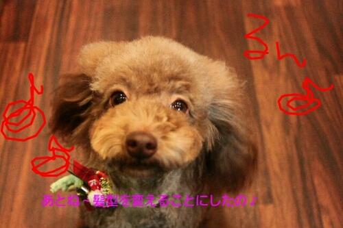 安室ちゃん_b0130018_029742.jpg