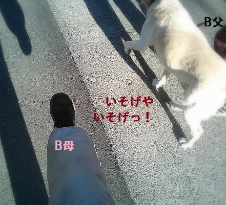 b0226221_1050773.jpg