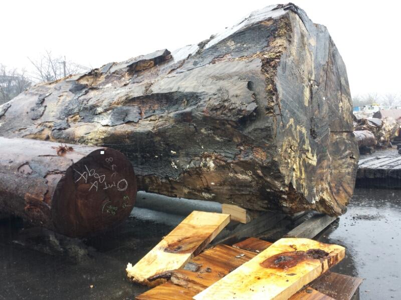 材木市場_e0155231_1120462.jpg