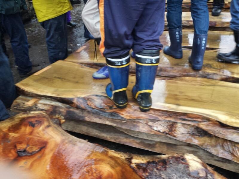 材木市場_e0155231_1120624.jpg