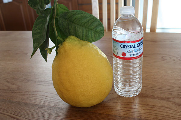 巨大レモン ポンデローザ_f0101174_09460288.jpg