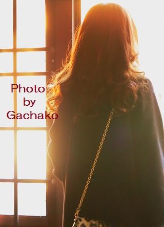 黄金色のヒヨコ_e0241944_19192396.jpg