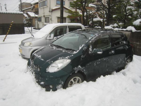 この時期にしては意外な大雪が…。_e0121558_12262983.jpg