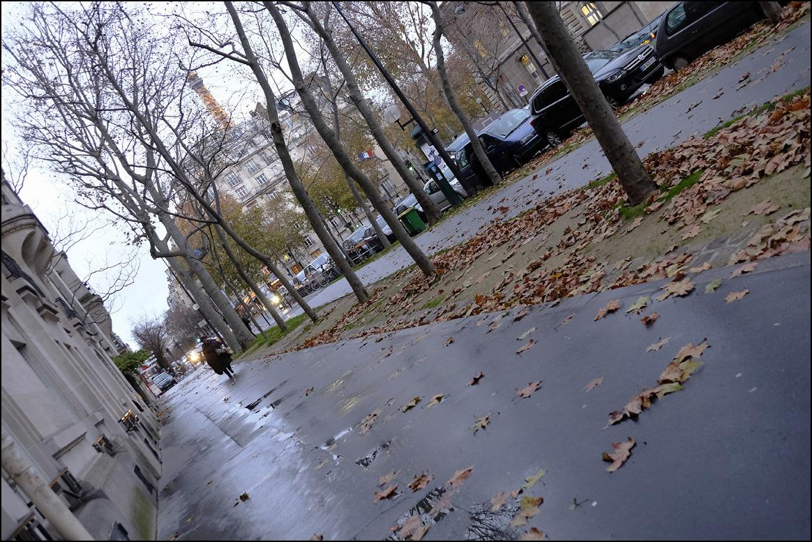 雨の週末がなぜか嬉しい。雨の名前、そして巴里の雨、、、、_a0031363_1055094.jpg