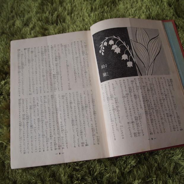 私の一番好きな本_a0292194_10584996.jpg