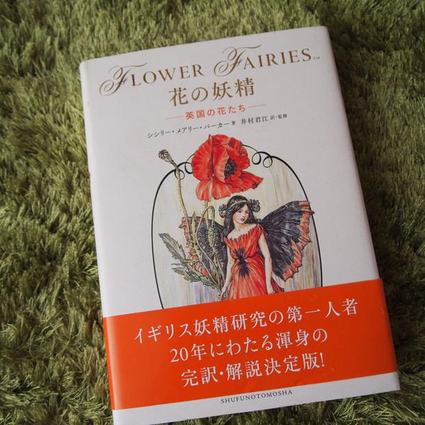花の妖精ー英国の花たちー_a0292194_19574493.jpg