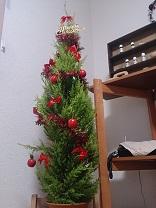 クリスマスツリーでアロマ_d0272805_1747369.jpg
