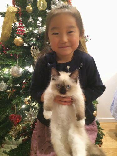 もうすぐメーリークリスマス_e0033609_1358830.jpg