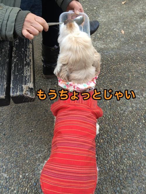 b0067012_1111073.jpg