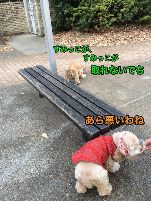 b0067012_132517.jpg