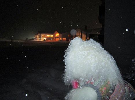 雪遊び~(1)_b0177436_12315243.jpg