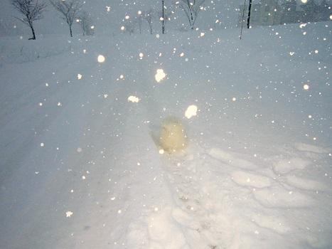 雪遊び~(1)_b0177436_12585645.jpg