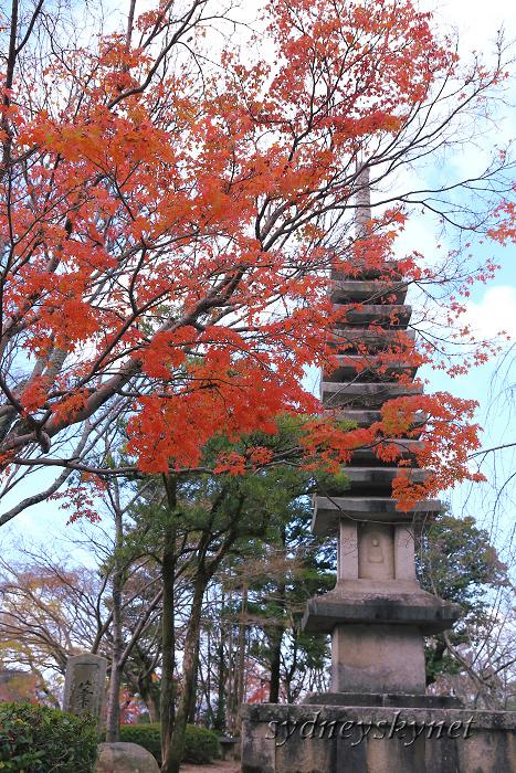 京都 ~3~ 清水寺の紅葉_f0084337_18355898.jpg