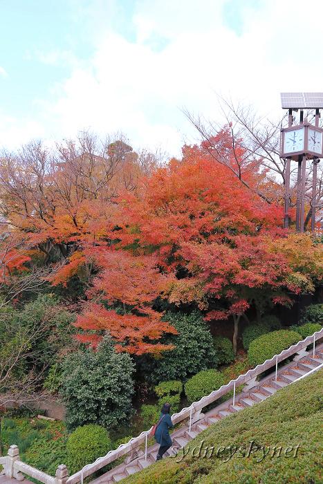 京都 ~3~ 清水寺の紅葉_f0084337_18361795.jpg