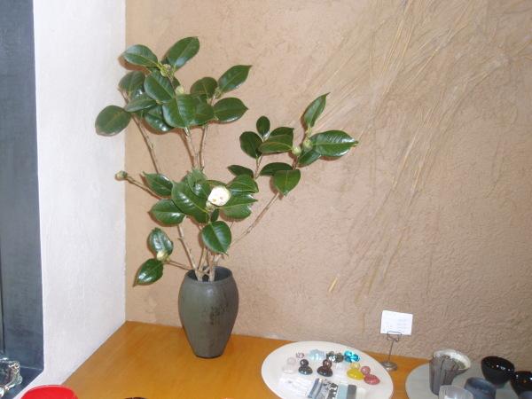 お花を入れました_b0132442_18242708.jpg