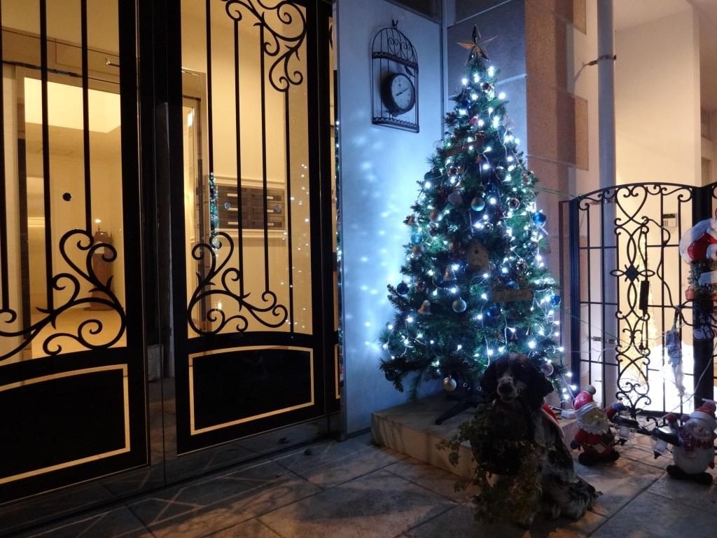 「メゾン・ド・バッハ」のクリスマス_d0092262_022482.jpg