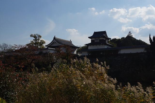 軍師黒田官兵衛・黒田長政が残した福岡城を訪ねて・・・・秋の博多の旅 秋の黒田城_d0181492_14151419.jpg