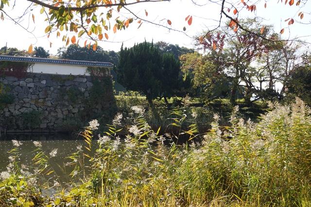 軍師黒田官兵衛・黒田長政が残した福岡城を訪ねて・・・・秋の博多の旅 秋の黒田城_d0181492_14175355.jpg
