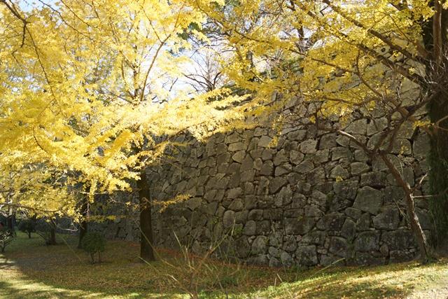 軍師黒田官兵衛・黒田長政が残した福岡城を訪ねて・・・・秋の博多の旅 秋の黒田城_d0181492_14191662.jpg