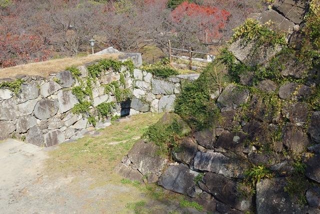 軍師黒田官兵衛・黒田長政が残した福岡城を訪ねて・・・・秋の博多の旅 秋の黒田城_d0181492_14212595.jpg