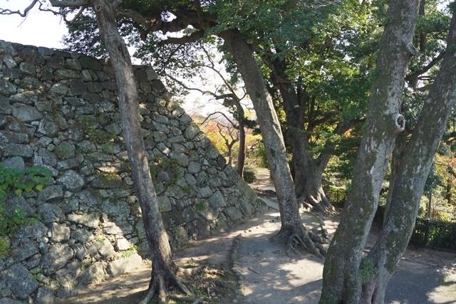軍師黒田官兵衛・黒田長政が残した福岡城を訪ねて・・・・秋の博多の旅 秋の黒田城_d0181492_14214628.jpg