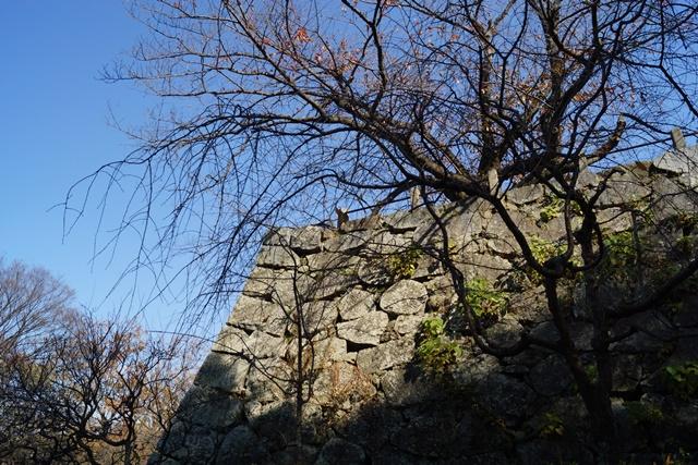 軍師黒田官兵衛・黒田長政が残した福岡城を訪ねて・・・・秋の博多の旅 秋の黒田城_d0181492_1424491.jpg