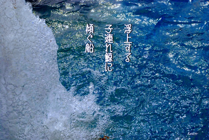 f0053297_14202.jpg