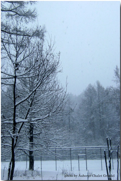 Bon anniversaire! 友人と誕生を祝う 本日の雪 そして阿弥陀岳の雪化粧_d0109415_1522770.jpg