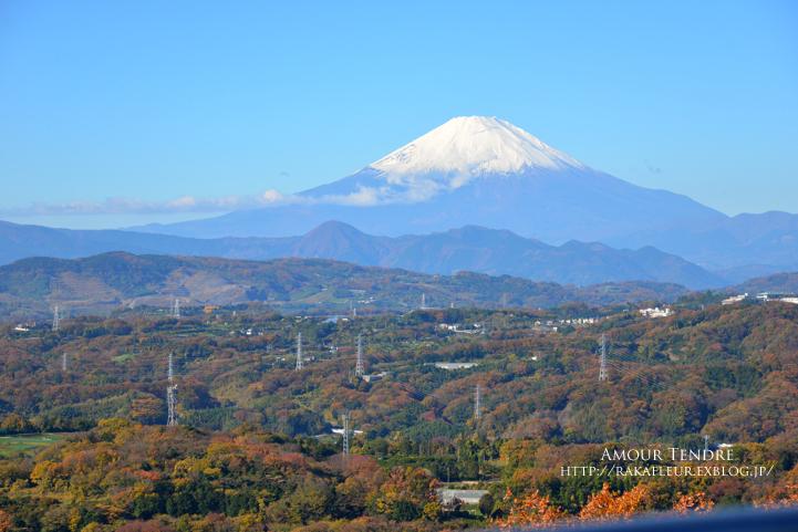 湘南平から箱根へ_c0250634_1731357.jpg
