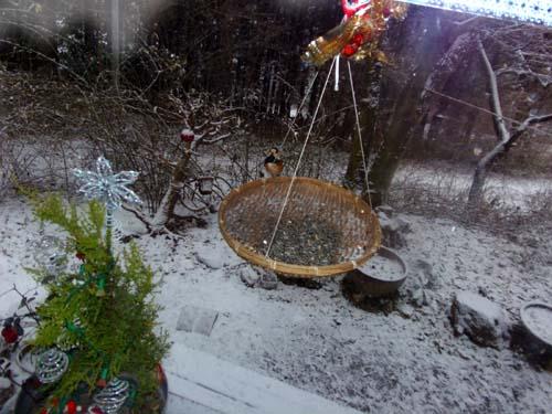 雪が降る♪_d0127634_11433171.jpg