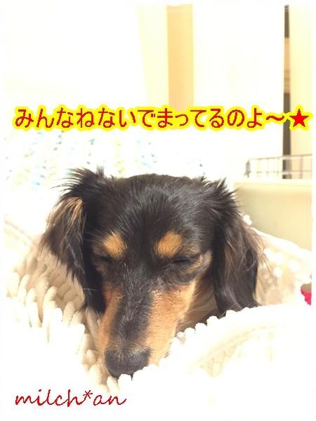 b0115642_23181832.jpg