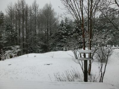 今シーズン初の積雪です_f0019247_20582994.jpg