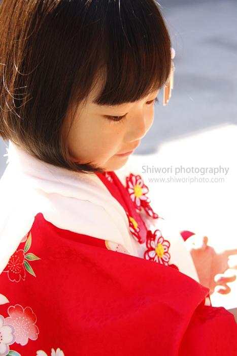 ♪753 Photo Gallery♪_d0170980_19364020.jpg