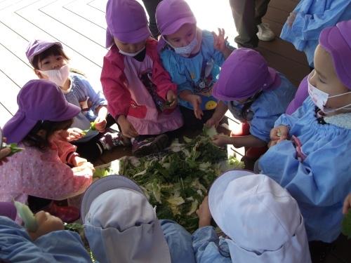 わいガヤ収穫祭2〜みんなをつなぐメガ大鍋_f0334882_09410723.jpg