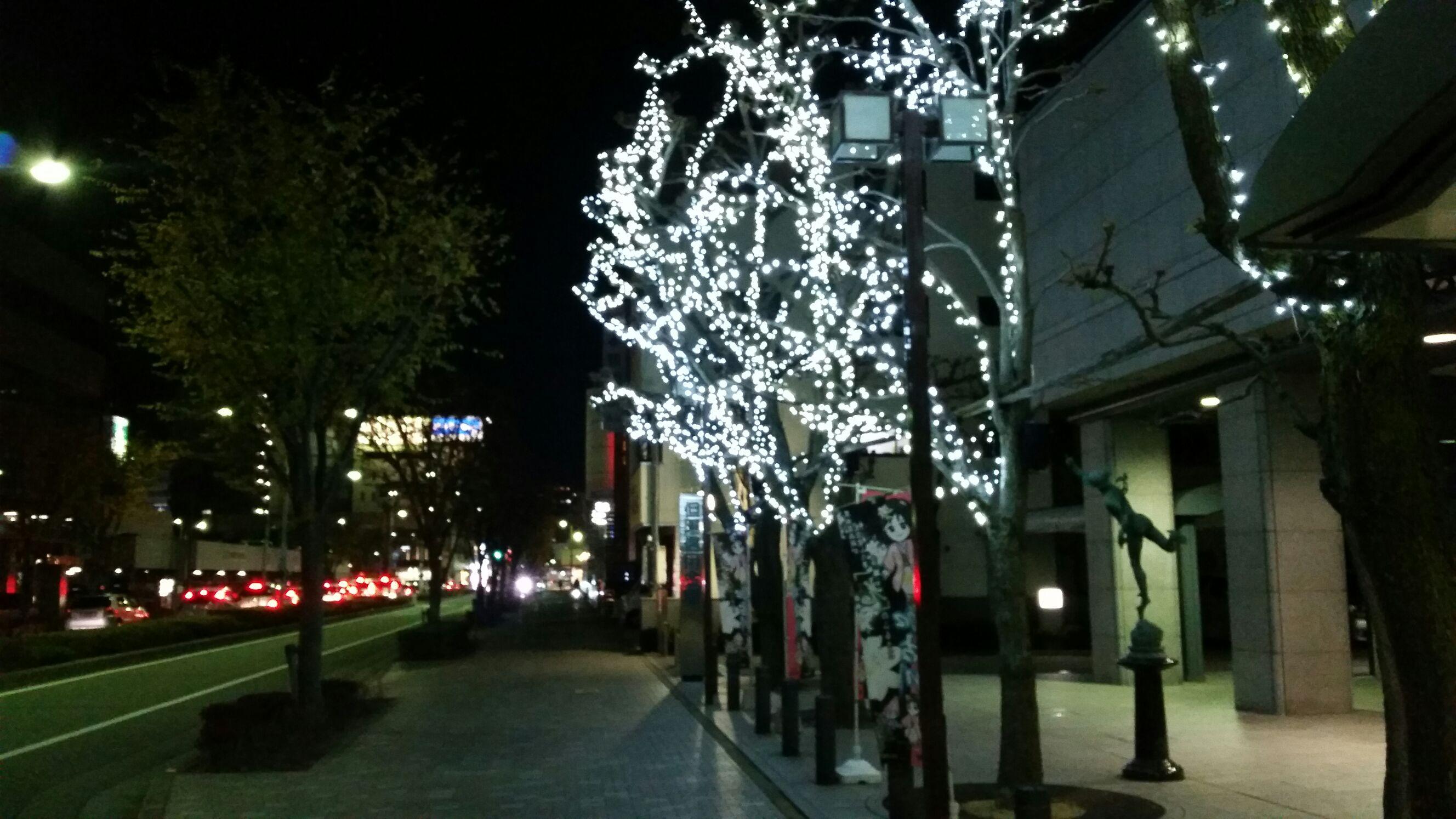 神戸ルミナリエ_e0326688_16293819.jpg