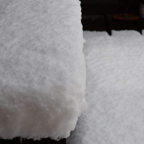 こんな雪は久しぶり....。_f0099102_2102866.jpg