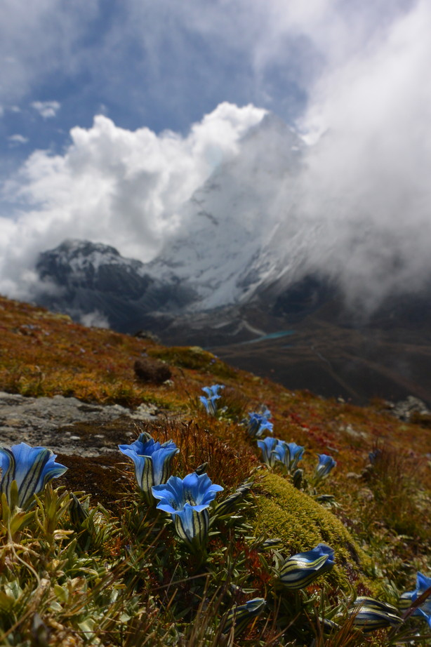 """2014年10月 『エヴェレスト・三峠越えトレッキング』 October 2014 \""""Three Pass Crossing in Everest\"""" _c0219616_1924932.jpg"""