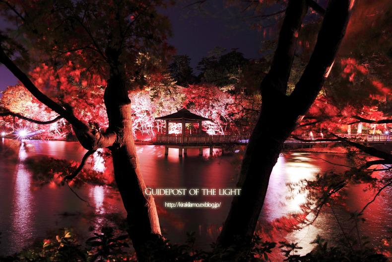 2014年の晩秋を彩った紅葉写真を一挙ご紹介!_f0357923_22581987.jpg