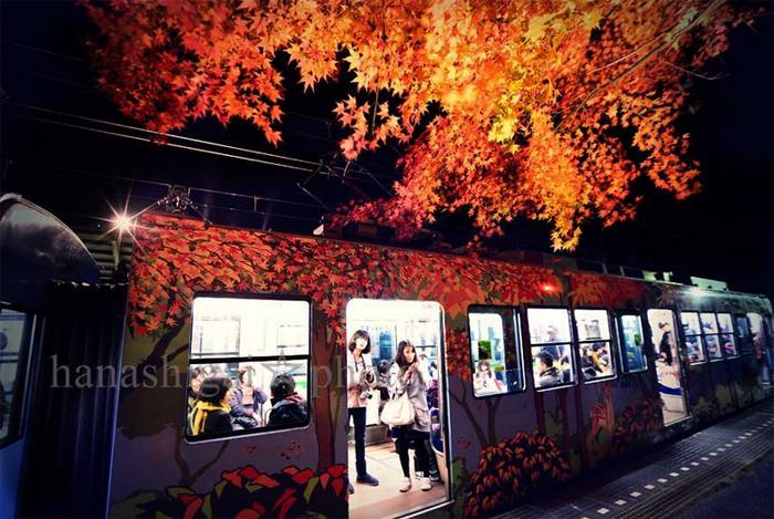 2014年の晩秋を彩った紅葉写真を一挙ご紹介!_f0357923_2304250.jpg
