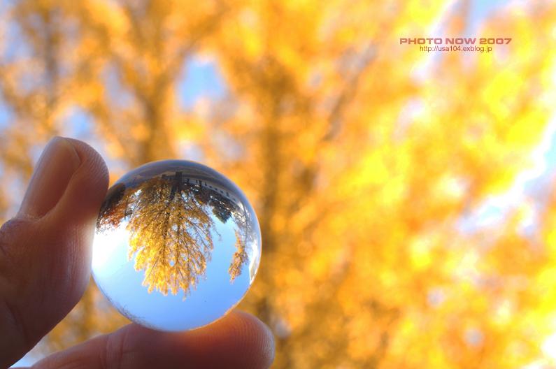 2014年の晩秋を彩った紅葉写真を一挙ご紹介!_f0357923_2342194.jpg