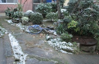 12月17日「雪」_f0003283_17572170.jpg