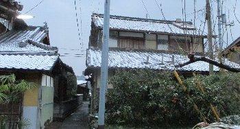 12月17日「雪」_f0003283_17572692.jpg