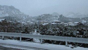 12月17日「雪」_f0003283_17573010.jpg