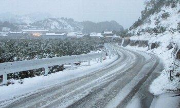 12月17日「雪」_f0003283_17573357.jpg