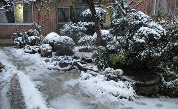 12月17日「雪」_f0003283_17573628.jpg