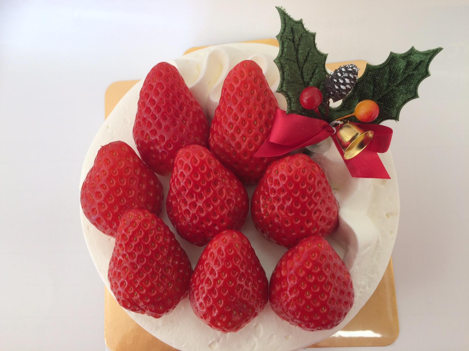 Ω Ω Ω ~ クリスマスケーキご予約受付中_b0214599_12303927.jpg